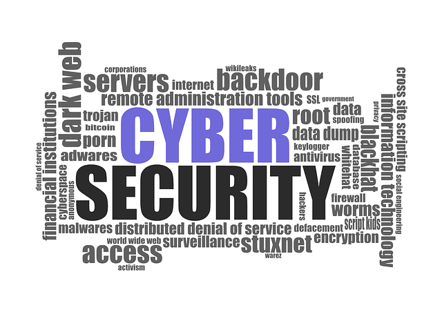 cyber security 1784985 640small